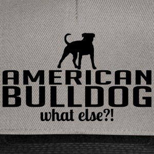 AMERICAN BULLDOG whatelse - Casquette snapback