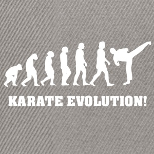 Karate evolution - Snapback Cap