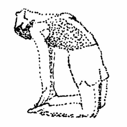 Camel Pose - Snapback Cap