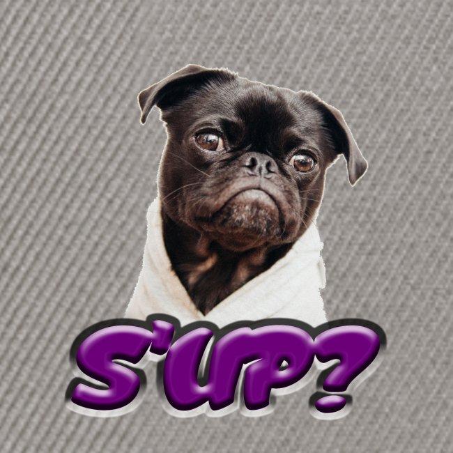 Sup pug