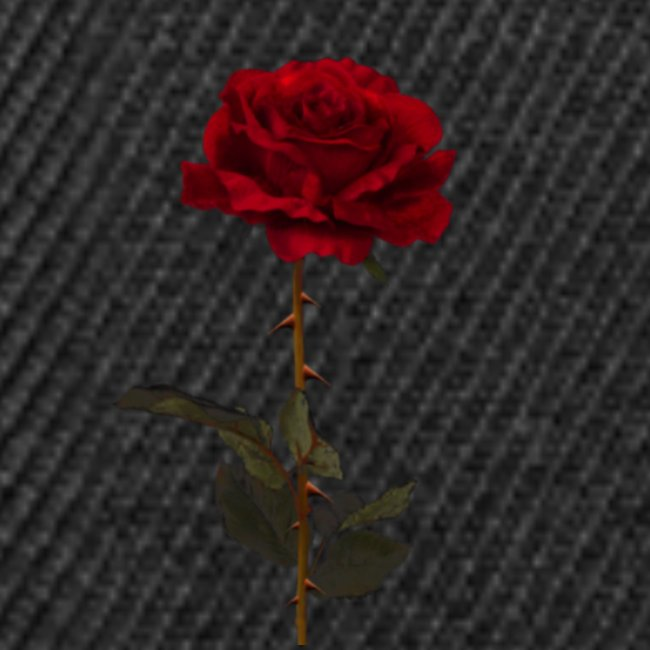 rosas tumblr