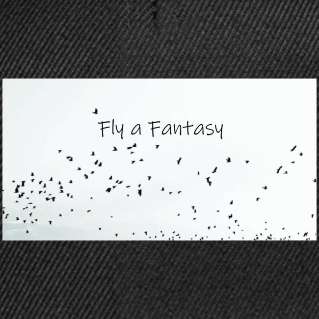 Fly a Fantasy