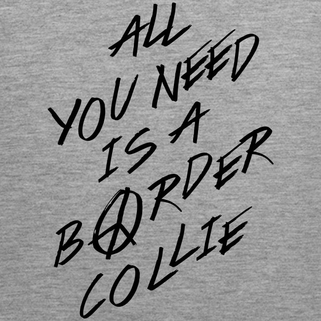 All You Need…is a border collie