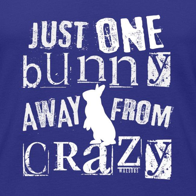 One Bunny Crazy