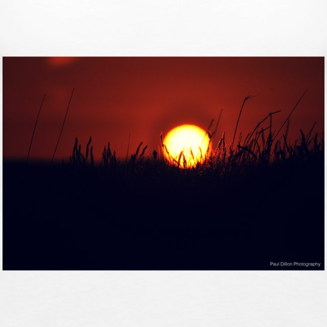Paul Dillon Photography