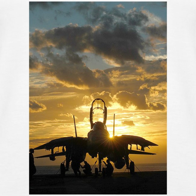 tomcat sunset