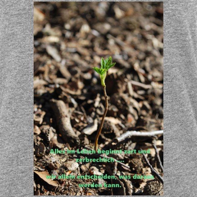Hege die zarte Pflanze