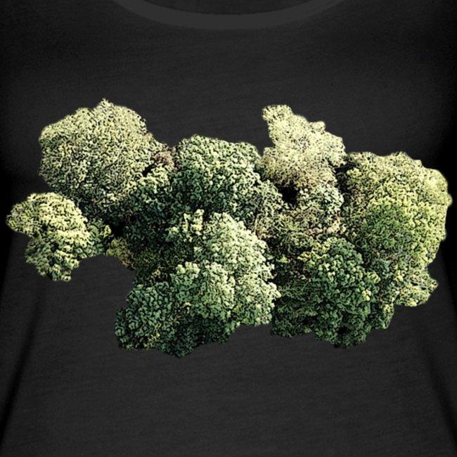 trees R1