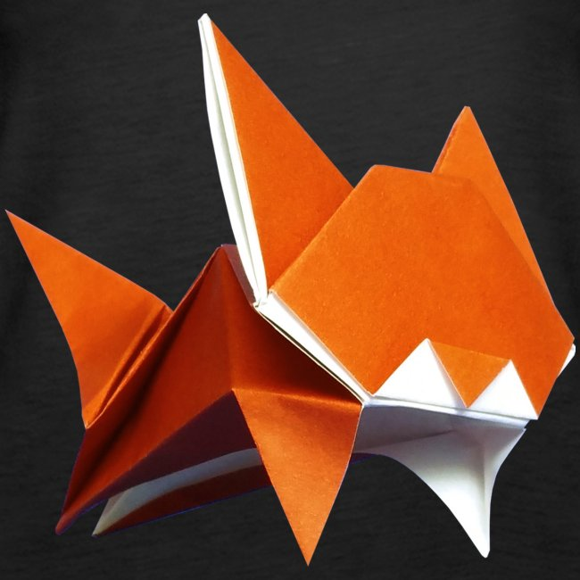 Origami Cat and Instruction Royalty Free Vector Image | 650x650