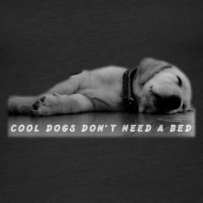 Hund cool schläft am Boden