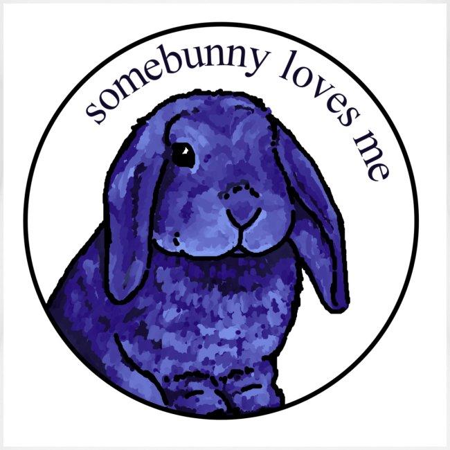 Somebunny Loves Me