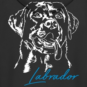 LABRADOR RETRIEVER 2 - Men's Premium Hooded Jacket