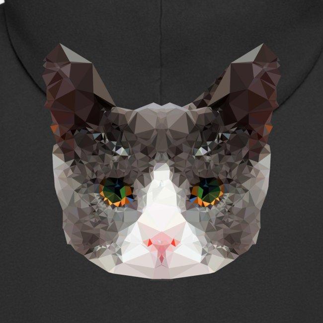 Triangle Cat