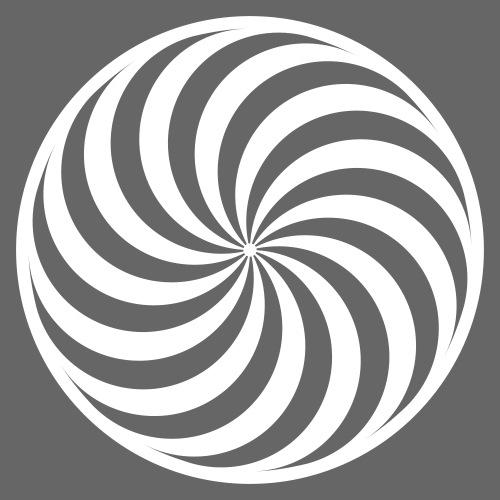 Toruswirbel 12fach - Männer Premium Kapuzenjacke