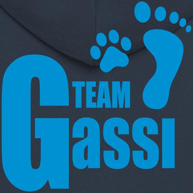 Vorschau: Team Gassi - Männer Premium Kapuzenjacke