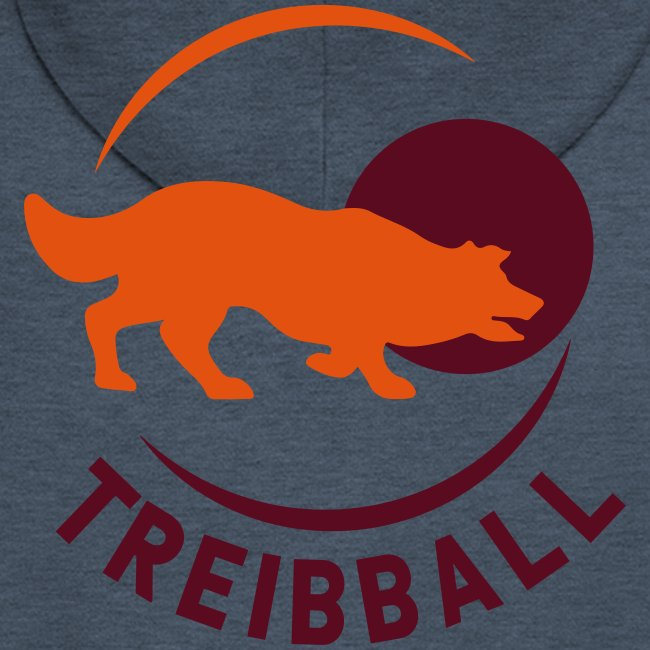 Treibball Produkte