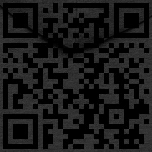 QR Code - Men's Premium Hooded Jacket