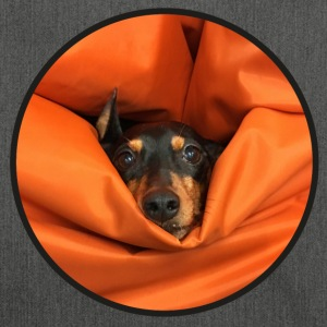 The pinscher, eaten by the seat-bag - Shoulder Bag made from recycled material