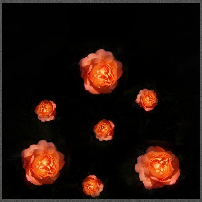 Gott ist gut - Rose Orange