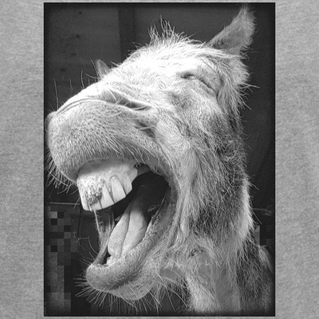 lachender Esel
