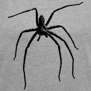 Spider / Black Widow + Skull with spider phobia - Women's T-shirt with rolled up sleeves