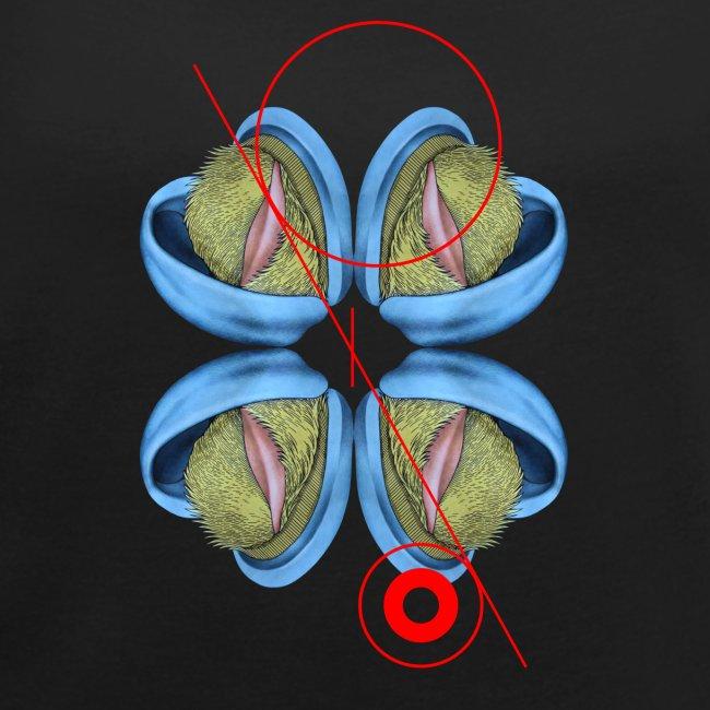 Kreis und Linie