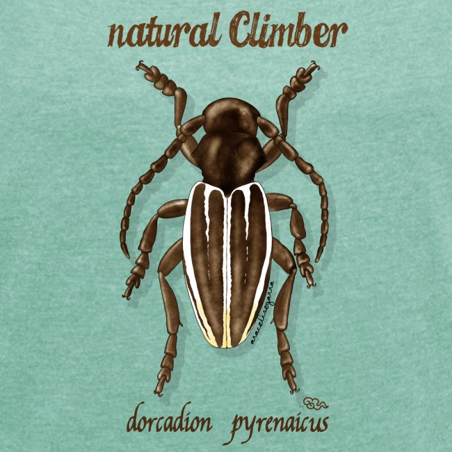 Natural Climber dorcadion