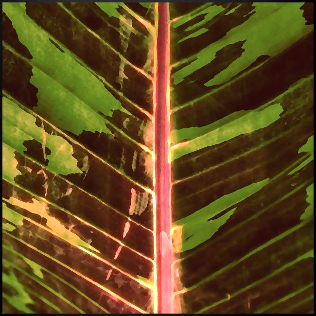 Bananas leaf watercolor