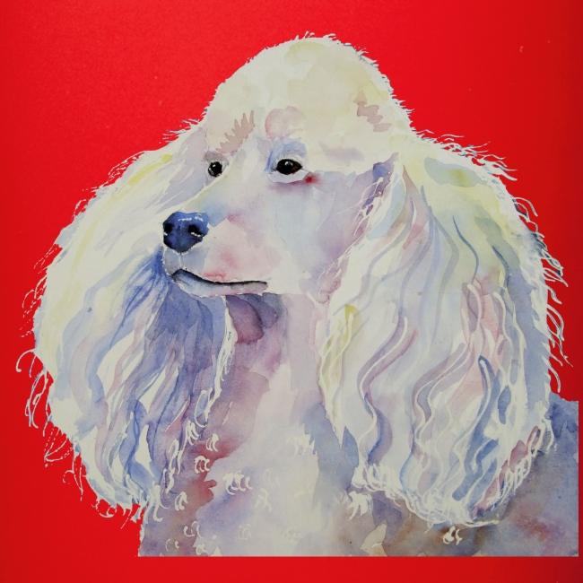poodle standard white