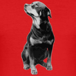 BIG DOG COLLECTION - Slim Fit T-skjorte for menn