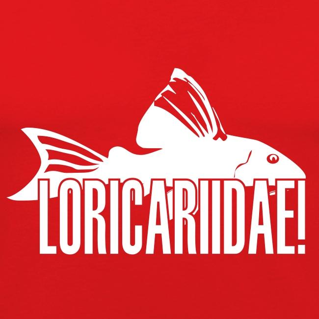 loricariidae