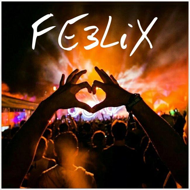 FE3LiX Logo. . g