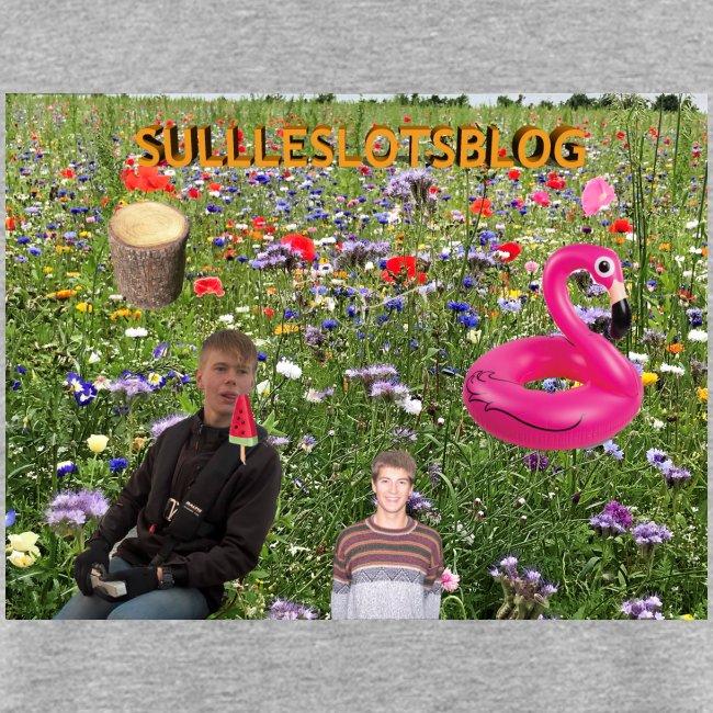 Sulleslotsblog