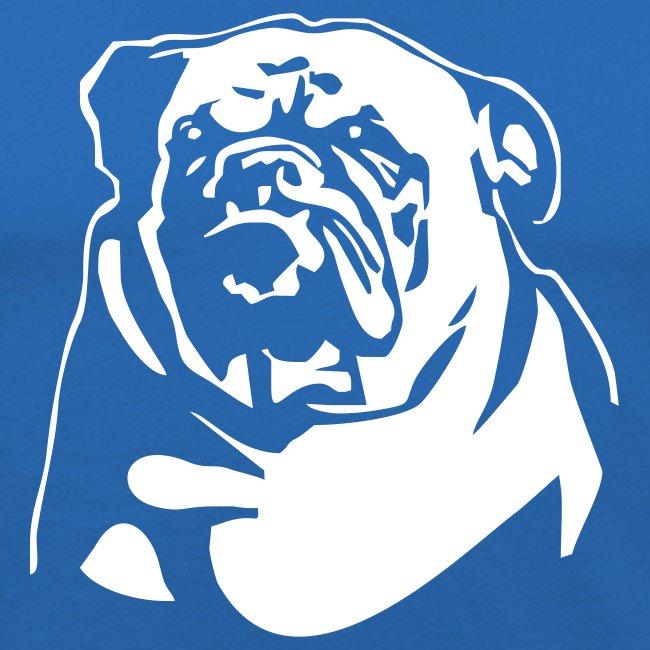 English Bulldog - negative