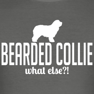 BEARDED COLLIE what else - Men's Slim Fit T-Shirt