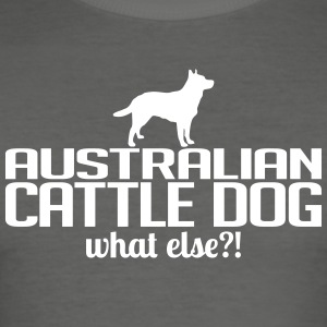 Australian Cattle Dog whatelse - Tee shirt près du corps Homme