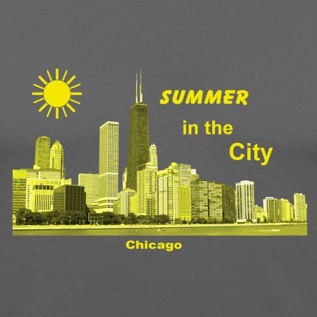 Summer Chicago Illinois USA