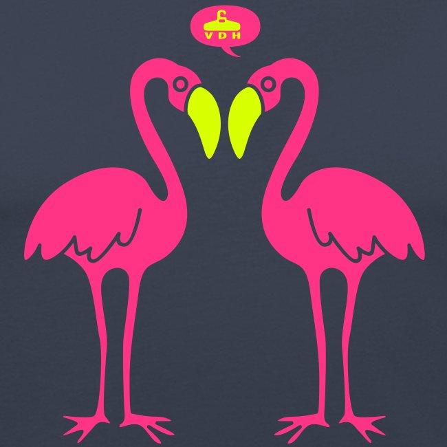 flamingos2 vdh
