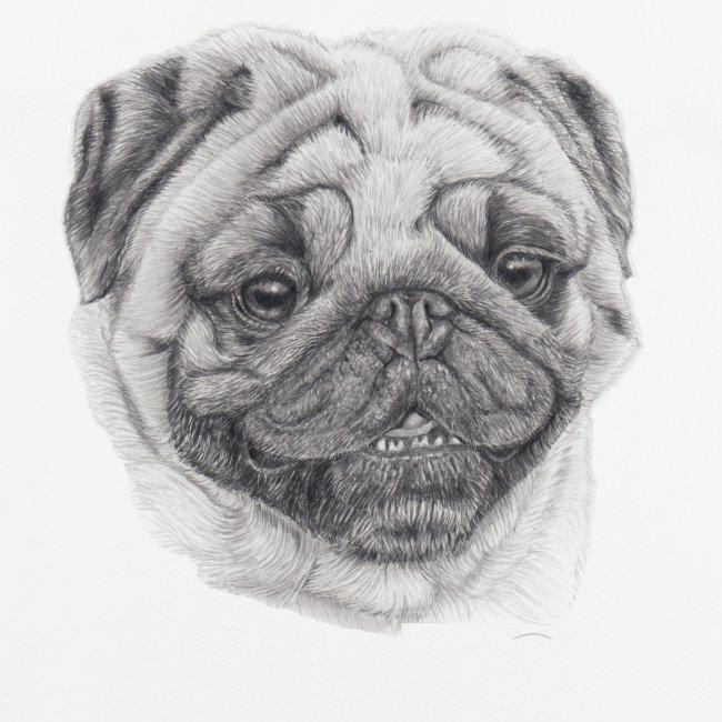 Pug mops 2