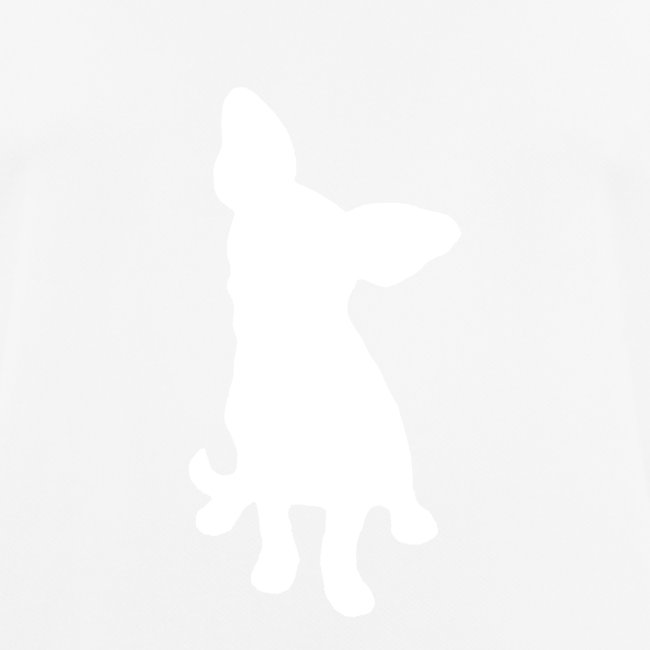 Chihuahua istuva valkoinen