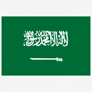 National Flag Of Saudi Arabia - Men's Breathable T-Shirt