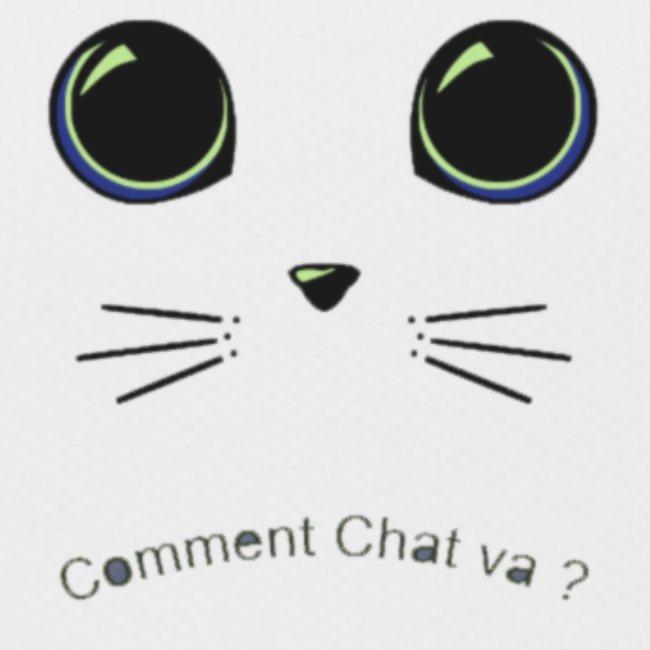 comment chat va ?