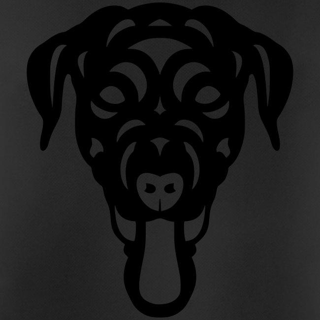 Labrador Dorianna
