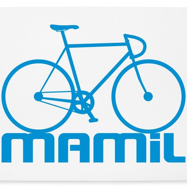 Mamil Large Bike
