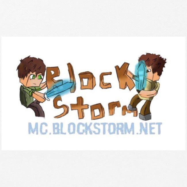 bsn logo jpg