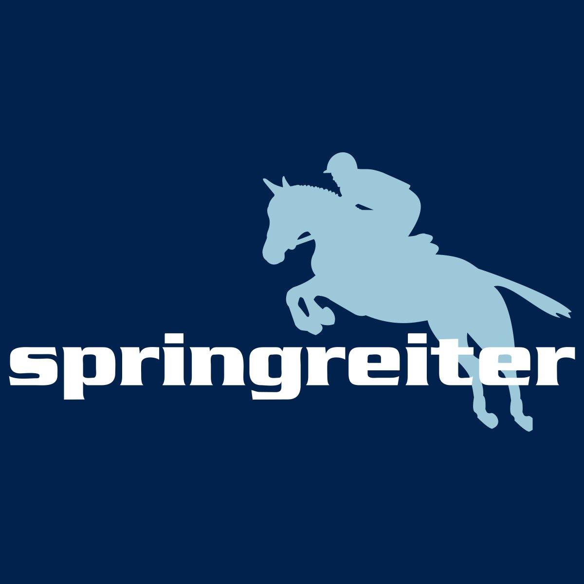 Springreiter mit Springpferd