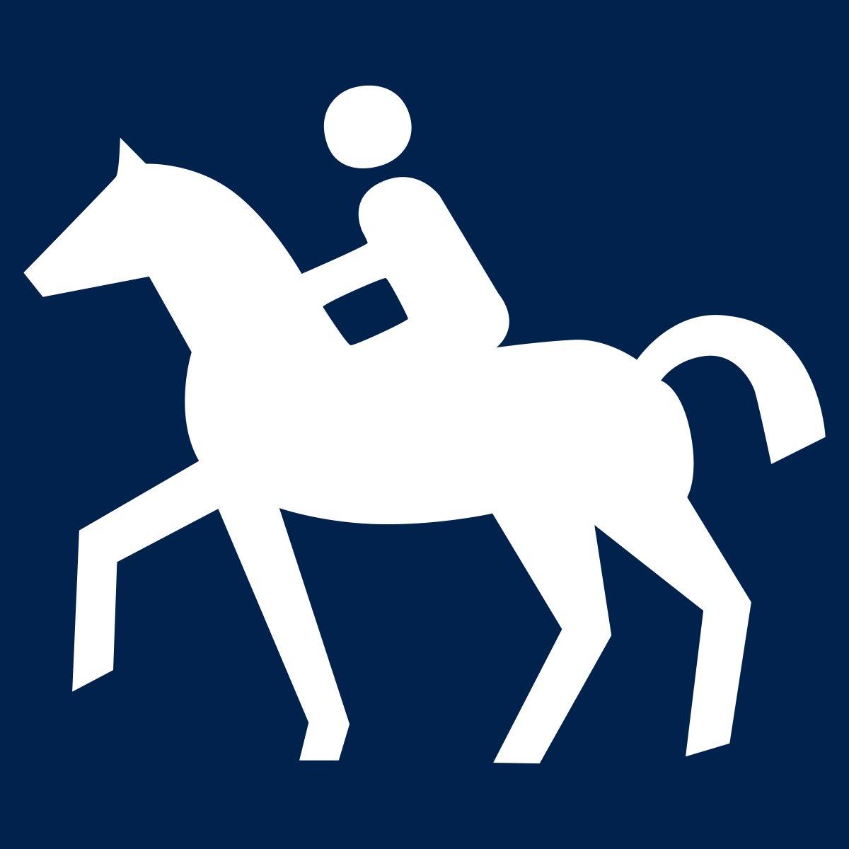 Pferd und Reiter