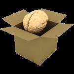brain_box