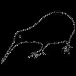 kiwikontur