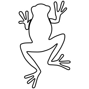 frog A